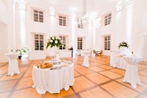 10 Stoječi sprejem v Baročni dvorani