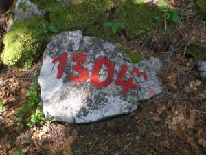 CIMG8821