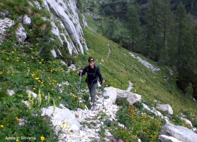 Bohinjske planine 27. Julij 2011 007