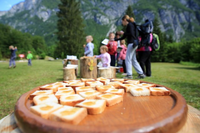 Childrens Wknd Bohinj flower festival