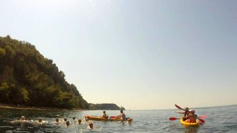 Slovenia 2016 - Open Water swim in Piran Bay