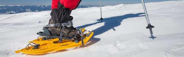 snowshoe-sizing